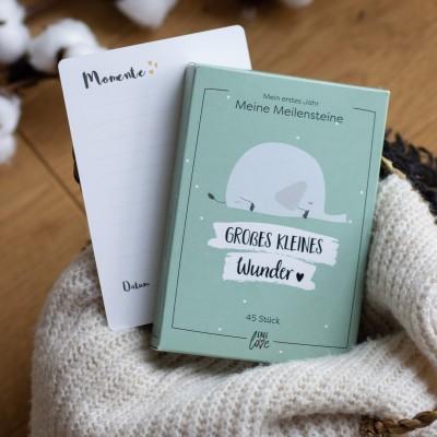 Meilensteinkarten - mein erstes Jahr - Süßes Geschenk zur Geburt
