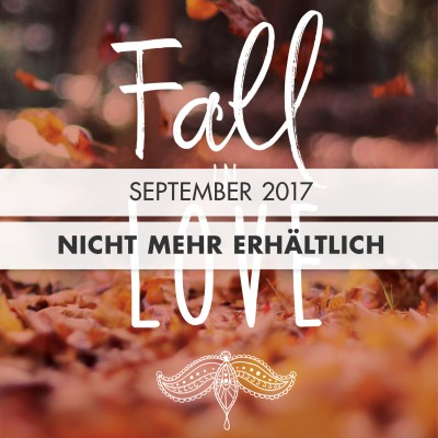 Fall in Love Edition: Gesamtwert 20,50 EUR